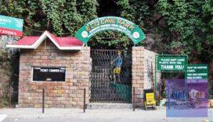 Eco Cave Garden